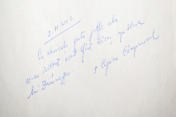Ciprian Campineanu.JPG